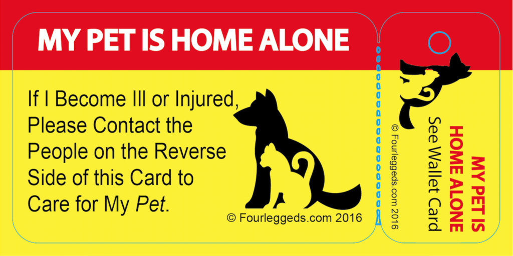pet alert card and key tag